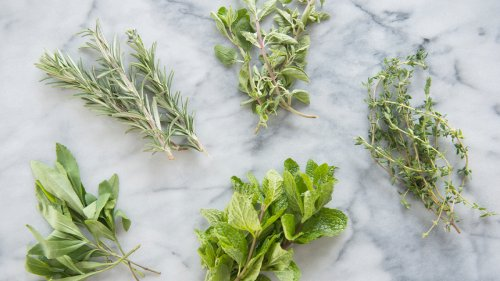 5 Herbs to Reverse Hair Loss, Boost Immunity, Ward Off Brain Aging, and More