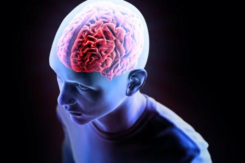 """MIND-Ernährung – die """"Gehirn-Diät"""", die Demenz vorbeugen kann"""