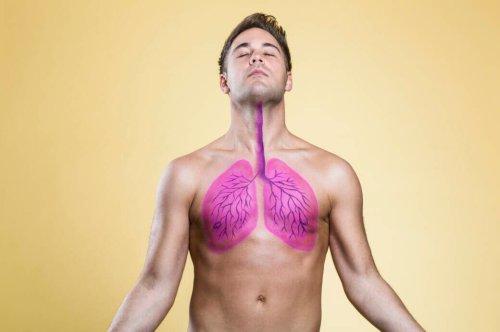 5 Lebensmittel, die gut für die Lunge sein sollen