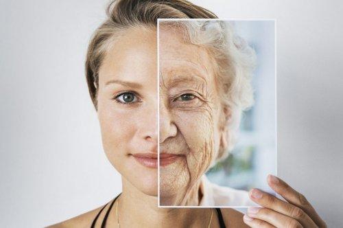 Mit Kalorienreduktion soll sich das Altern verlangsamen lassen