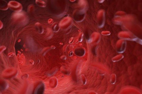 Blutarmut (Anämie) – Ursachen, Symptome und Behandlung
