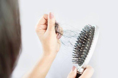 Heimliche Keimschleuder: So oft solltest du deine Haarbüste reinigen - FIT FOR FUN