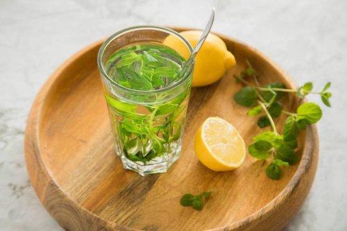Tipps vom Experten: Tee ganz einfach zu Hause selber machen - FIT FOR FUN