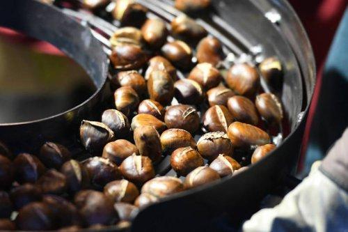 Herbstliche Delikatesse: So kannst du Esskastanien vielseitig zubereiten - FIT FOR FUN