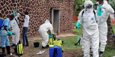 What is Ebola Virus Disease?
