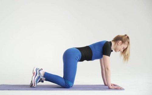 This One Exercise Will Make Lower Back Stronger - Fitwirr