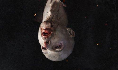 Sink your teeth into the trailer for Serbian folk horror Vampir