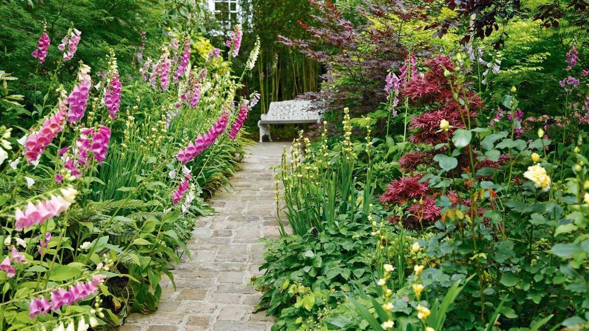 Walk this way with these garden path design ideas