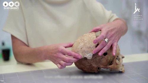 Prehistoric human shakes up evolutionary tree