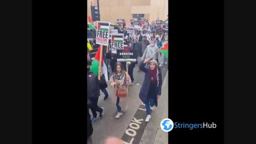 Free Palestine Protest in London, UK