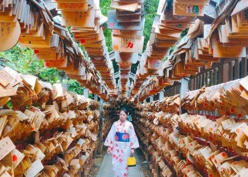 Visiting Tokyo's Northern Neighbors
