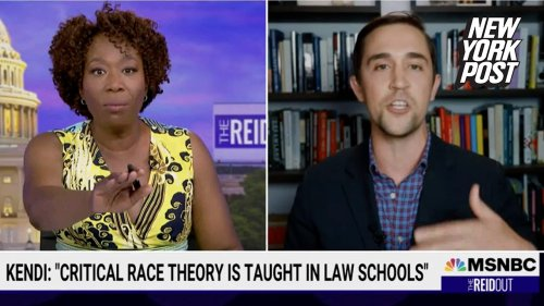 Joy Reid owned by critical race theory critic over refusing to let him speak