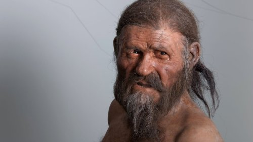 Ötzi the Iceman: What we know 30 years after his discovery