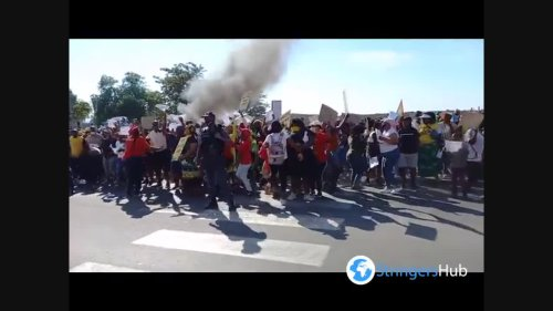 South Africa: Justice For Lulu Demonstration In Eastern Cape