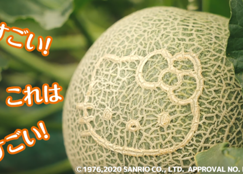 Melon Madness in Japan!