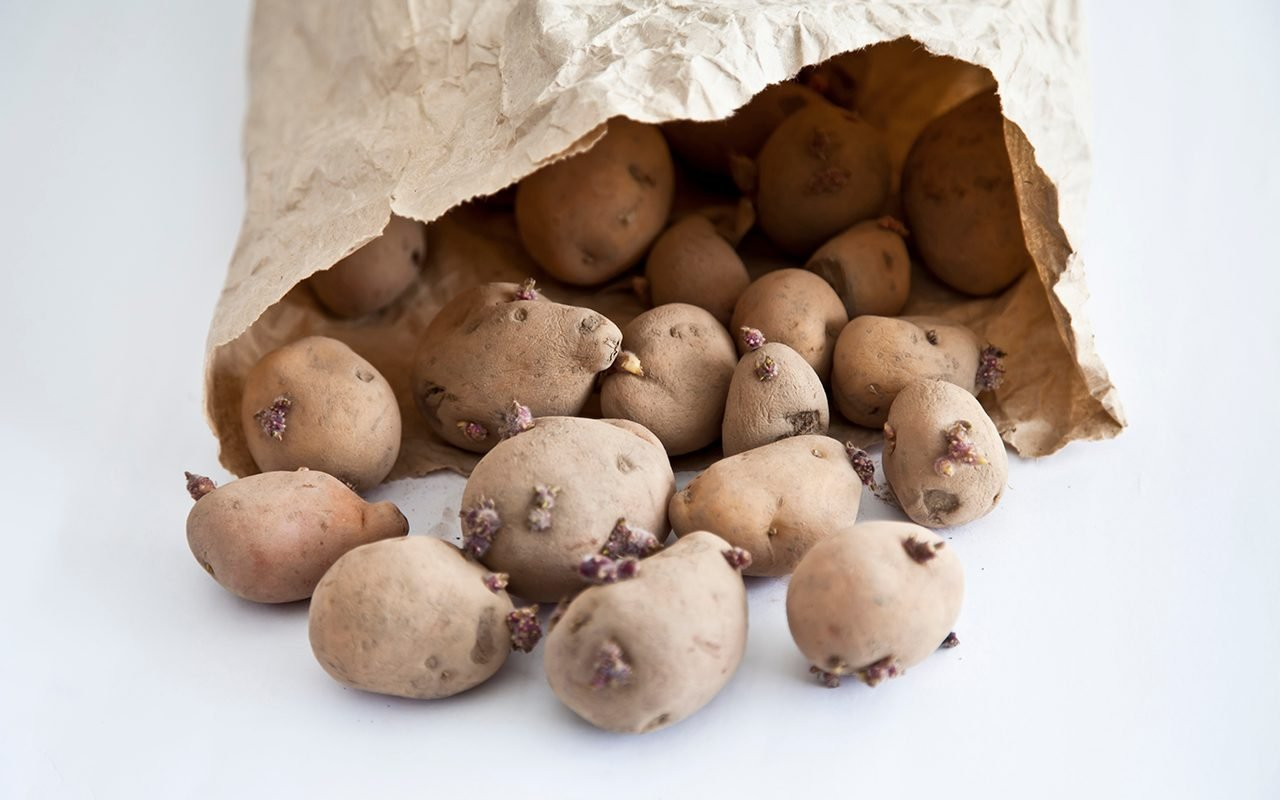 Is It Safe to Cook with Sprouted Potatoes?