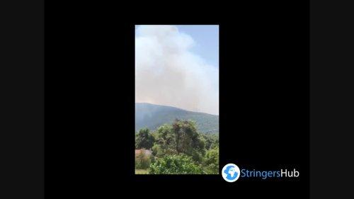 Greece: Wildfire Breaks Out Near Stamata