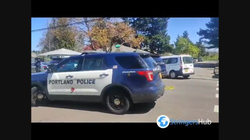 US: Protesters Gather After Police Shoot And Kill A Man At Lents Park In Portland