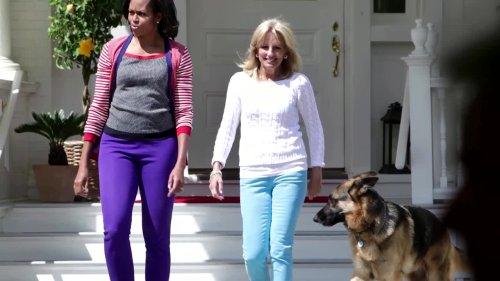 Bidens announce death of 'first dog' Champ