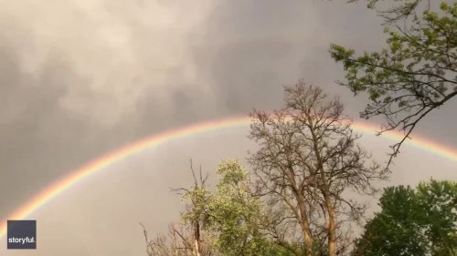 'Kids Hunting for Pot of Gold' as Rainbow 'Ends' in Indianapolis Family's Backyard