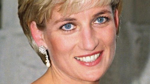 Doctor Who Tried To Save Princess Diana Reveals New Information