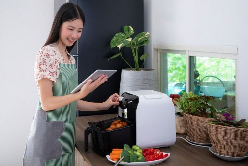 Which Air Fryer Is Right For You?