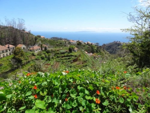 AMAZING THINGS TO DO IN MADEIRA, PORTUGAL