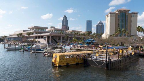 Tampa Tech Boom Due to Word of Mouth Reputation, Says Mayor