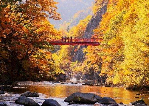 Japan's Fantastic Fall Colors!