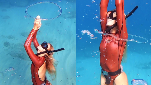 'Free Diver Befriends Octopus While Swimming Underwater'