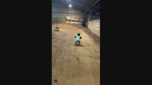 Watch Out, Tom Pidcock! Two-Year Old Races on Balance Bike After Watching British Cyclist Win Gold
