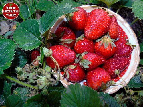 Health Benefits Of Red Fruits And Vegetables