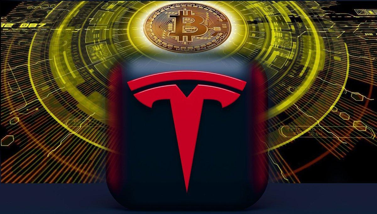 Elon Musk vows  to fix Dogecoin Transaction Efficiency after Bitcoin Reversal