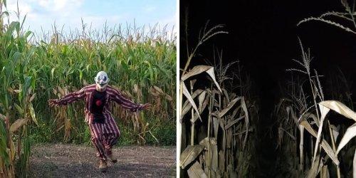 Ce labyrinthe hanté ouvre la nuit et c'est digne d'un vrai cauchemar