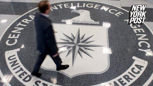 CIA sounds alarm over capture, killing of dozens of informants: report