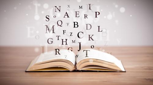 365 palabras esenciales del idioma español para hablar 365 días cover image
