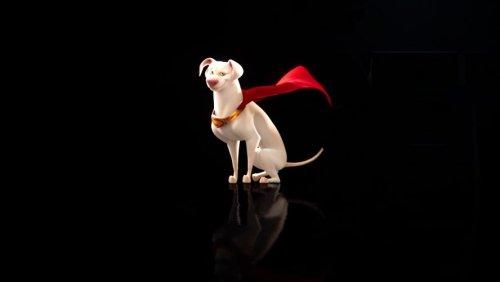 DC Super Pets: Cast Announcement