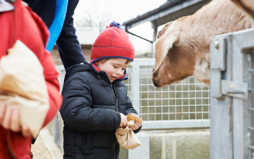 15 of the best family days out in Yorkshire