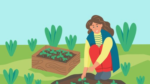 7 Best Gardening Apps, So You Can Stop Killing Your Plants