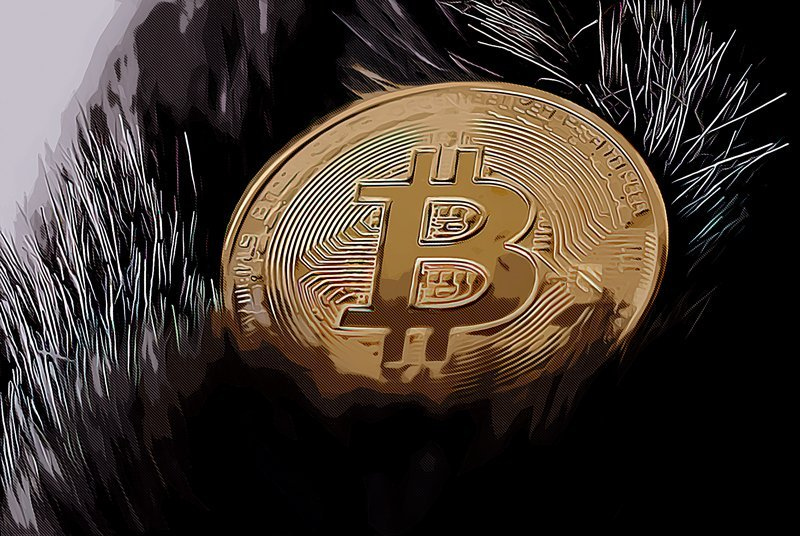 One of Bitcoin's biggest billionaire critics just admitted to buying Bitcoin