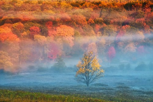 When and Where to See the Best Fall Foliage in the U.S.
