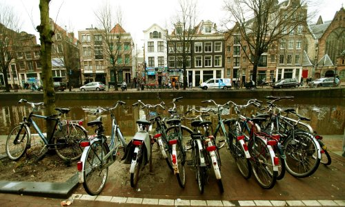 Cheesed off: Amsterdam to curb tourist shops amid visitor influx