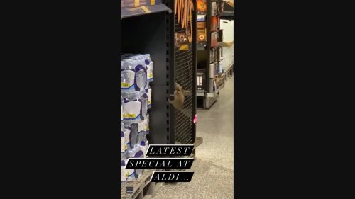 'Hell No': Rat Spotted Climbing Up Supermarket Shelf in Sydney