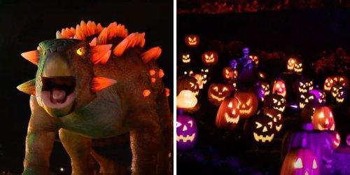 Illumi Laval aura un spécial Halloween et il y a une section avec 50 dinosaures