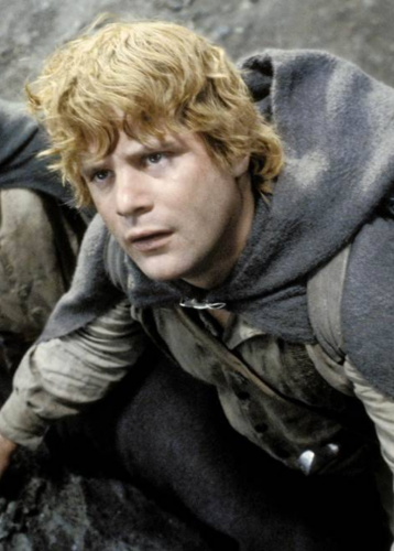 Sean Astin Wasn't Popular With The Cast Of 'Lord Of The Rings' Behind The Scenes