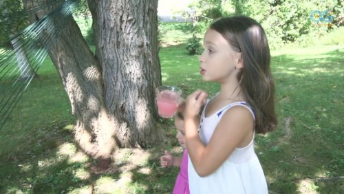 Newtown Kindness Lemonade Stand Serves Free Drinks With A Smile