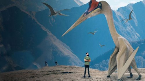 What If the Pterodactyl Was Still Alive?
