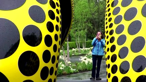 Dots everywhere at Yayoi Kusama's New York exhibition