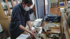 Remains of Unknown Dinosaur Species Found in World's Driest Desert