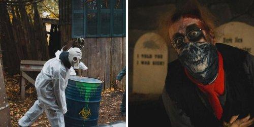 Ce verger se transforme en parcours de la terreur jusqu'à l'Halloween